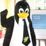 Maskotka - pingwin